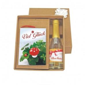 Geschenkset_Viel_Glueck_Geschenkbuch_mit_Flasche_Piccolo_mit_Goldblatt