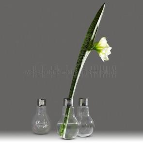 vase-gluehbirne